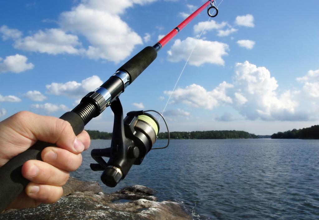 پکیج کامل ماهیگیری