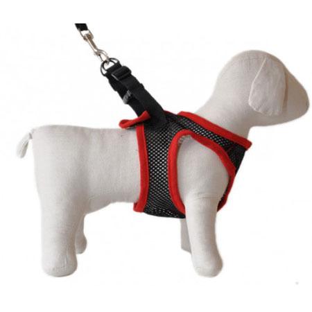 Dog_Comfy_Control_5
