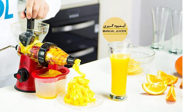 Manual juicer 10