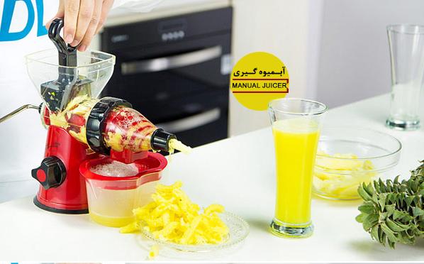 Manual juicer 8