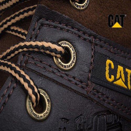 caterpillar_4