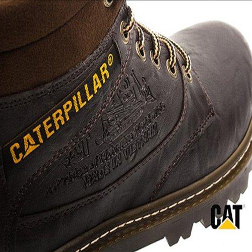 caterpillar_5