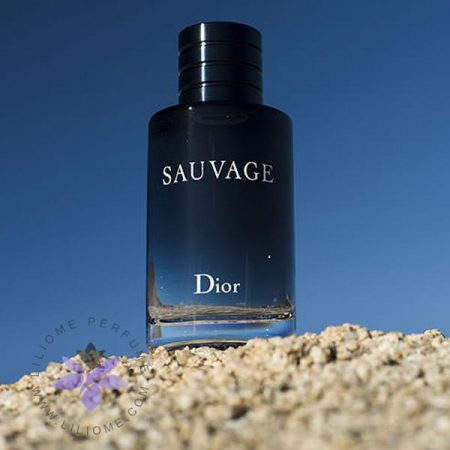 عطر ادکلن مردانه دیور ساواج Dior Sauvage