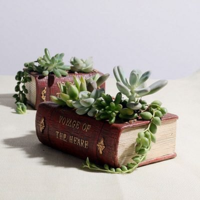 book pot_6
