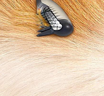برس گره باز کن مو سگ
